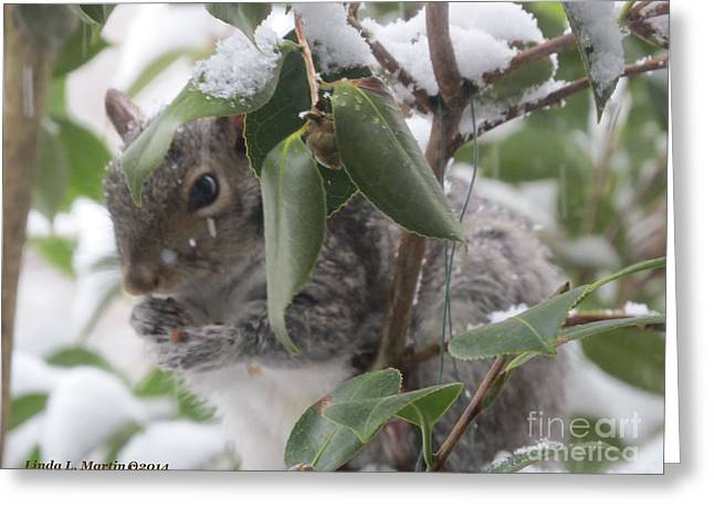 Llmartin Greeting Cards - Squirrel In Snow 1 Greeting Card by Linda L Martin