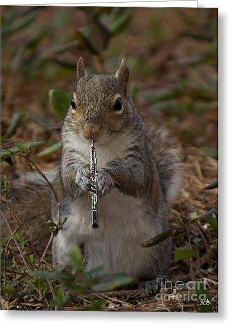 Playing Musical Instruments Greeting Cards - Squirrel With His Obo Greeting Card by Sandra Clark