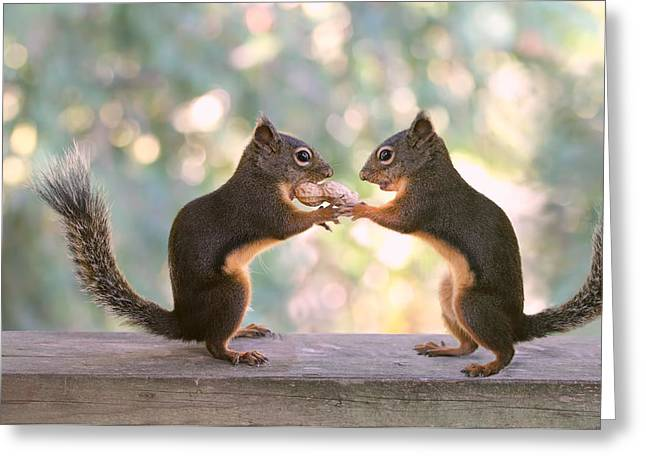 Love The Animal Greeting Cards - Squirrels That Share Greeting Card by Peggy Collins