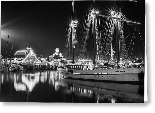 Tall Ships Greeting Cards - SSV Tole Mour By Denise Dube Greeting Card by Denise Dube
