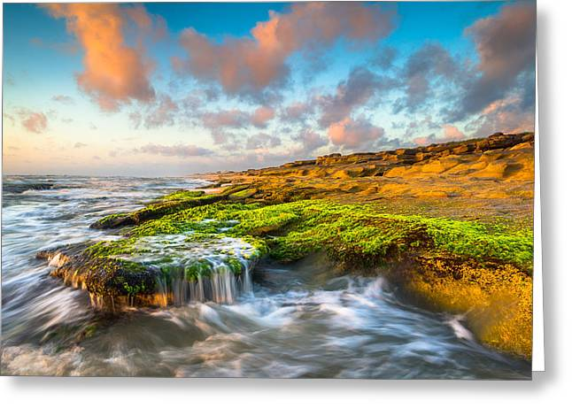 St. Augustine Greeting Cards - St. Augustine FL Beach Sunrise - The Coquina Coast Greeting Card by Dave Allen
