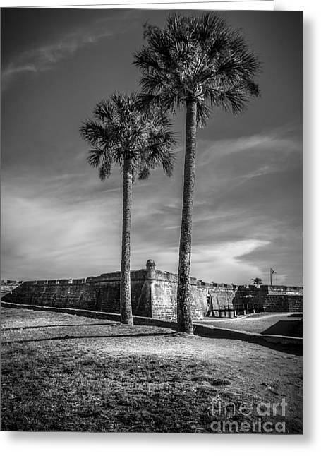 Spring Scenes Greeting Cards - St. Augustine Fort Greeting Card by Marvin Spates