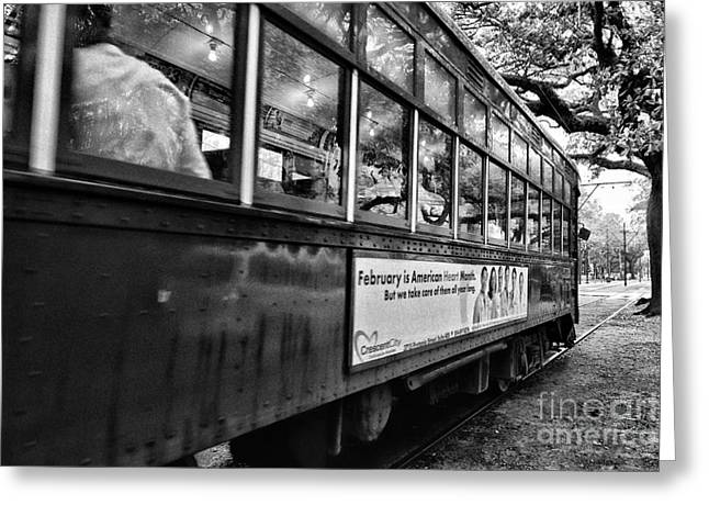 New Orleans Greeting Cards - St. Charles Ave Streetcar Whizzes By-black and white Greeting Card by Kathleen K Parker