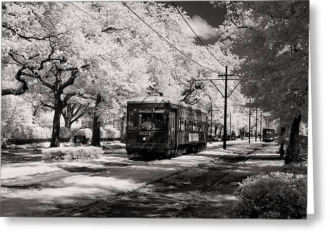 St Charles Avenue Greeting Cards - St. Charles Avenue in New Orleans Greeting Card by Mountain Dreams
