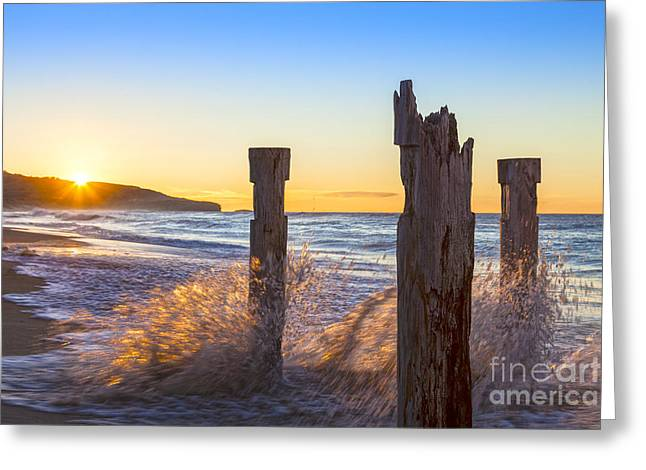Waves Splash Greeting Cards - St Clair Beach Dunedin at Sunrise Greeting Card by Colin and Linda McKie