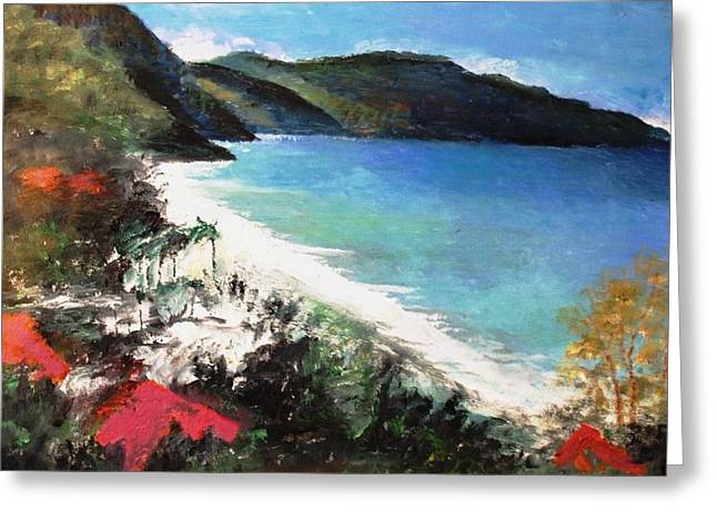 Anne-elizabeth Whiteway Greeting Cards - St. Croix as Viewed above the Carambola Resort Greeting Card by Anne-Elizabeth Whiteway