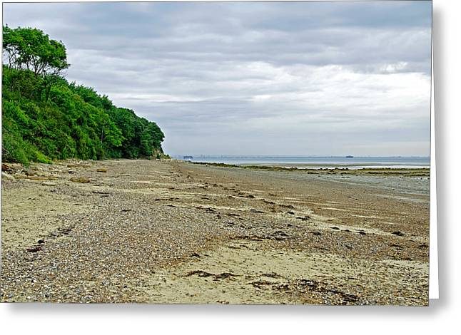 Coastal Greeting Cards - St Helens Beach - near Priory Bay Greeting Card by Rod Johnson