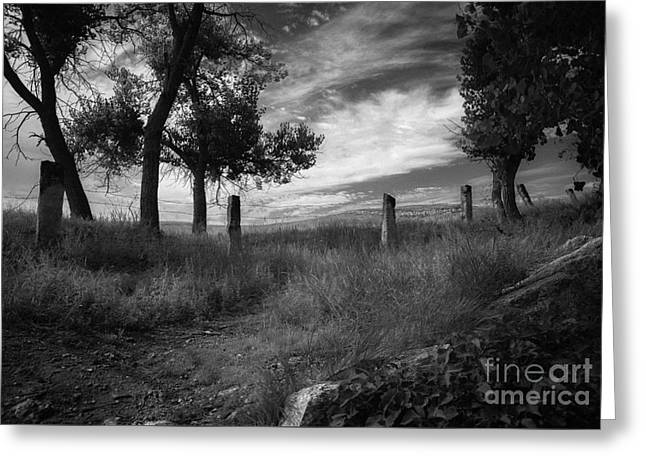 St. Jacobs Well View Greeting Card by Fred Lassmann