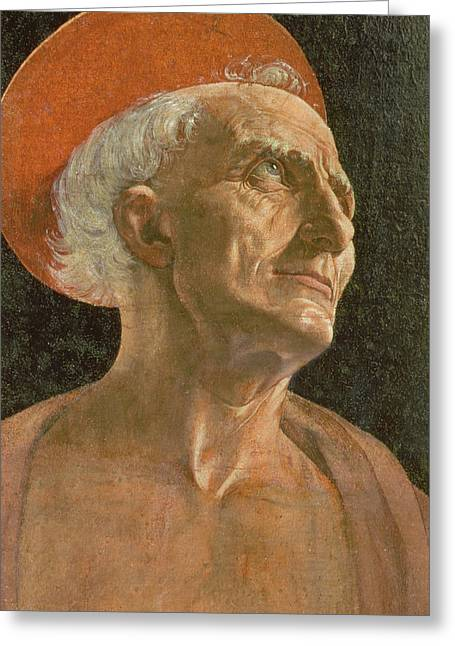 Hermit Greeting Cards - St. Jerome Greeting Card by Antonio Pollaiuolo