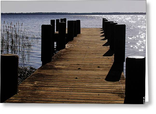 Stream Greeting Cards - St Johns River FLorida - A chain of lakes Greeting Card by Christine Till
