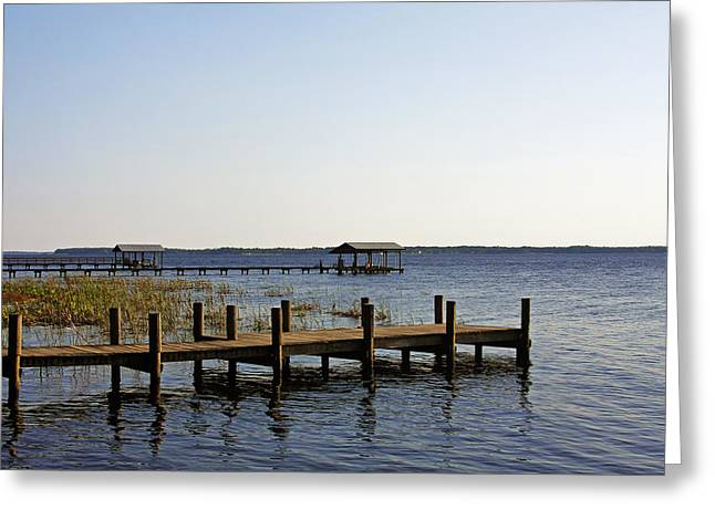 Waterways Greeting Cards - St Johns River Florida - Walk this way Greeting Card by Christine Till