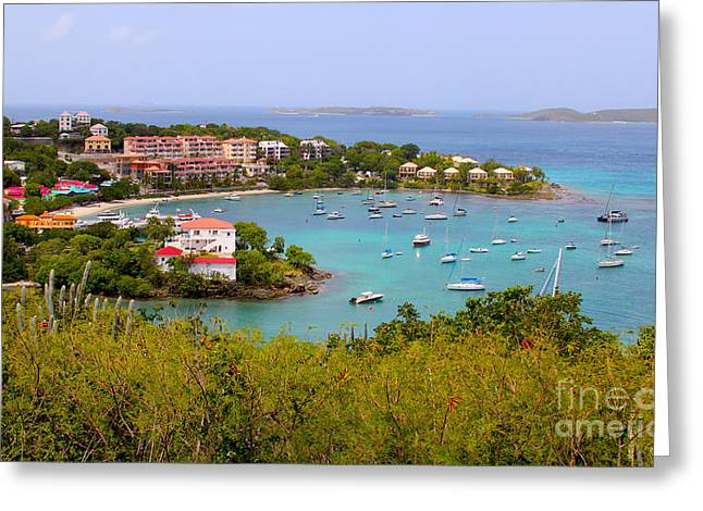 St John's View Greeting Card by Carey Chen