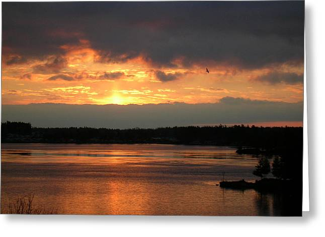 Bay St. Lawrence Greeting Cards - St Lawrence River Sunrise 7 Greeting Card by Robert P Hedden
