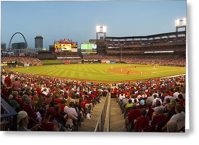 Boys Of Summer Greeting Cards - St. Louis Cardinals Pano 6 Greeting Card by David Haskett