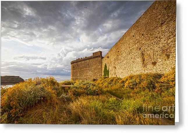 Ramparts Greeting Cards - St-Malo Brittany France Ramparts and Wildflowers Greeting Card by Colin and Linda McKie