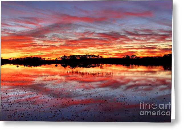 Beauty Mark Greeting Cards - St. Marks Sunset Greeting Card by Denis Tangney Jr