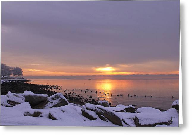 St Marys Greeting Cards - St. Marys by the Sea Sunrise Greeting Card by Stephanie McDowell