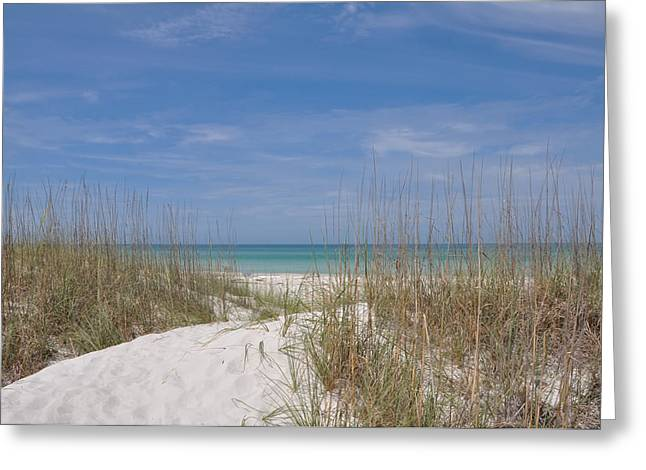 St. Petersburg Florida Greeting Cards - St. Pete Beach Greeting Card by Bill Cannon