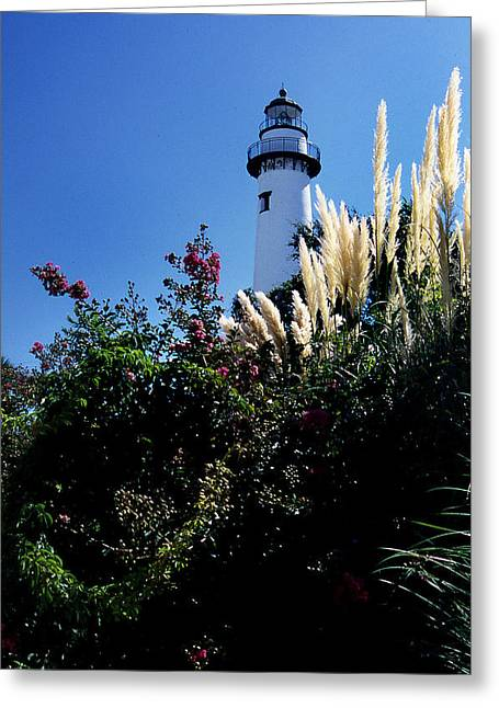 Photos Of Lighthouses Greeting Cards - St Simons Ligthhouse Greeting Card by Skip Willits