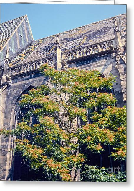 Pilgram Greeting Cards - St. Stephens Cathedral Greeting Card by Bob Phillips