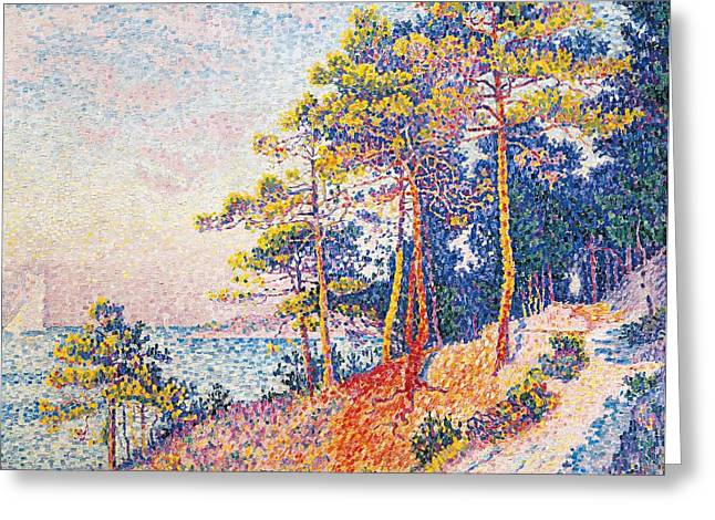 Literary Greeting Cards - St Tropez the Customs Path Greeting Card by Paul Signac