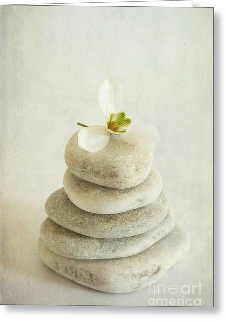 Piled Greeting Cards - Stacked stones with a snowdrop Greeting Card by Priska Wettstein