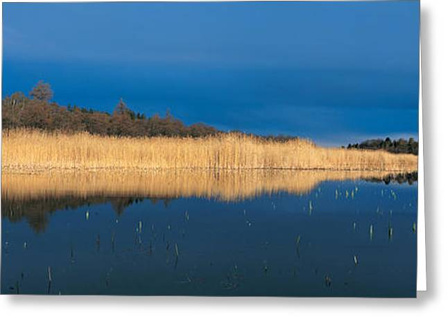 Reflecting Water Greeting Cards - Stafsund Uppland Sweden Greeting Card by Panoramic Images