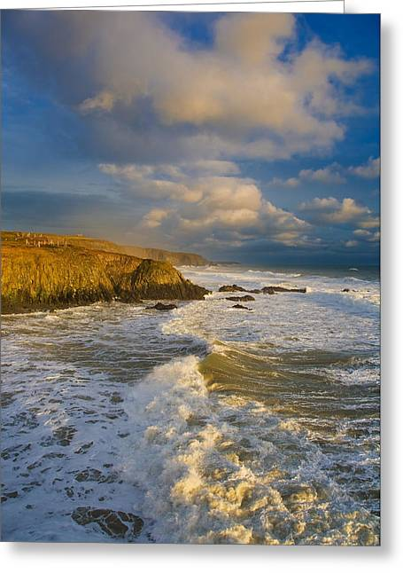 Visual Images Greeting Cards - Stage Cove, Near Bunmahon, The Copper Greeting Card by Panoramic Images