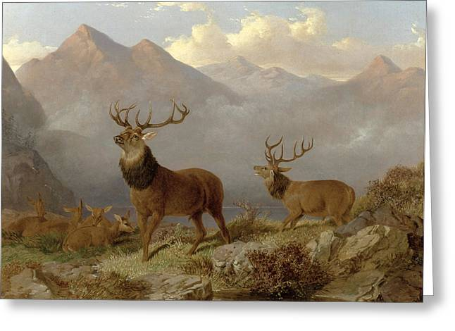 Hunting Greeting Cards - Stags And Hinds In A Highland Landscape Greeting Card by John Frederick Herring Jnr