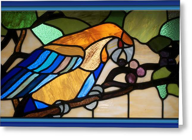 Colorful Photos Glass Art Greeting Cards - Stained Glass Parrot Window Greeting Card by Thomas Woolworth