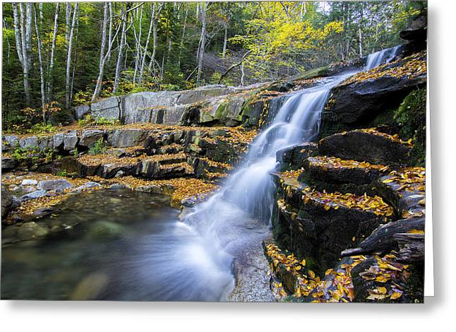 Autumn Landscape Pyrography Greeting Cards - Foliage at Stair Falls  Greeting Card by Benjamin Kelley