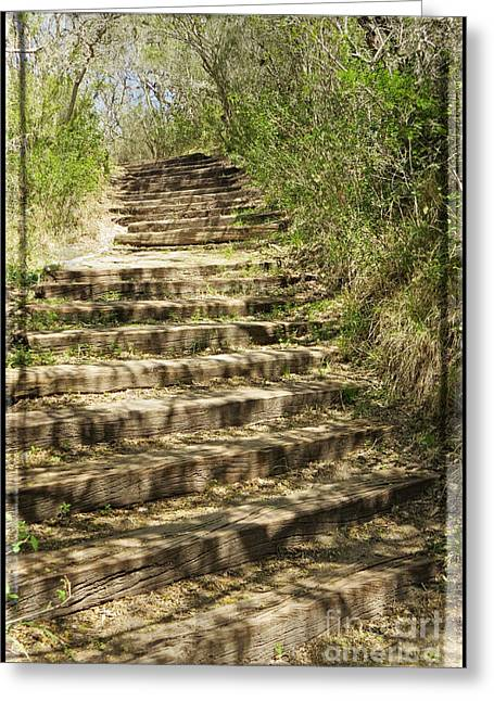 Wooden Stairs Greeting Cards - Stair Steps In the Forest Greeting Card by Ella Kaye Dickey