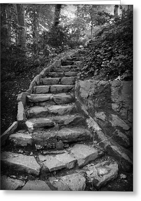 Sc Greeting Cards - Stairs in a Garden Greeting Card by Kelly Hazel