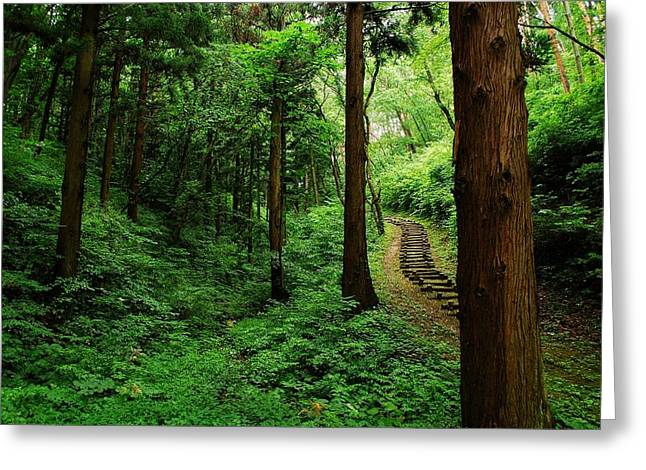 Nature Outdoors Greeting Cards - Stairway to Healing Greeting Card by Aaron S Bedell