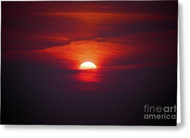 Terri Waters Greeting Cards - Stairway to Heaven Greeting Card by Terri  Waters