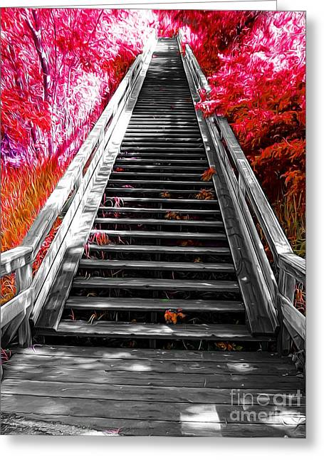 Wooden Stairs Mixed Media Greeting Cards - Stairway to Nature Greeting Card by John Kreiter