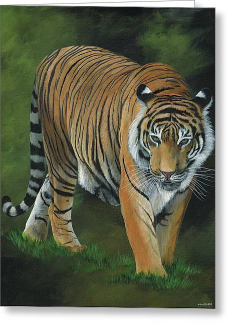 Proud Greeting Cards - Stalking Tiger Greeting Card by Heather Bradley