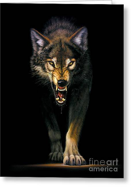 Animal Portraits Greeting Cards - Stalking Wolf Greeting Card by MGL Studio - Chris Hiett