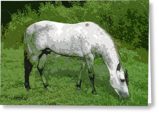 Expressionist Equine Greeting Cards - Stallion Grazing Greeting Card by George Pedro