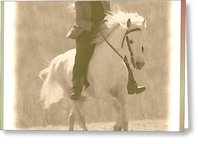 Stallion Strides Greeting Card by Patricia Keller