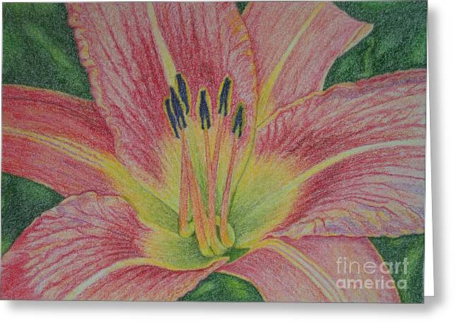 Petals Pastels Greeting Cards - Stamens Greeting Card by Monique Jackson