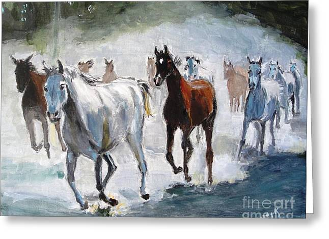Judy Kay Art Greeting Cards - Stampede Greeting Card by Judy Kay