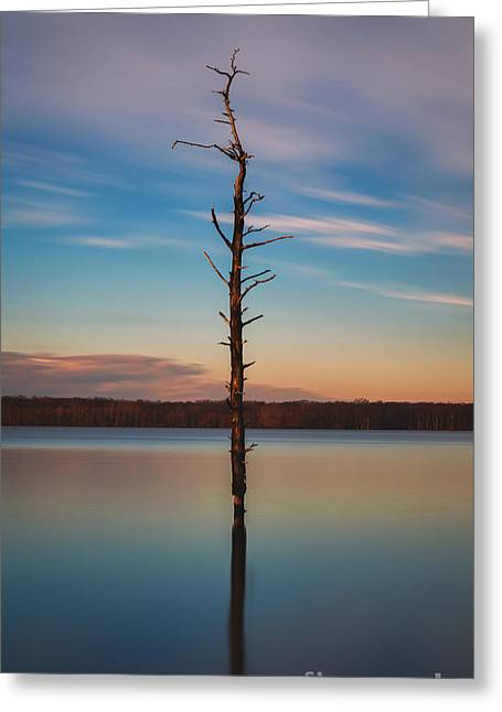 Manasquan Reservoir Greeting Cards - Stand Alone 16x9 Crop Greeting Card by Michael Ver Sprill