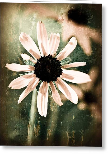 Textured Floral Greeting Cards - Stand Alone Greeting Card by Bonnie Bruno