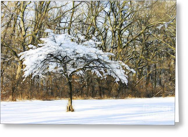 The Nature Center Greeting Cards - Stand Out from the Crowd Greeting Card by Patty Colabuono