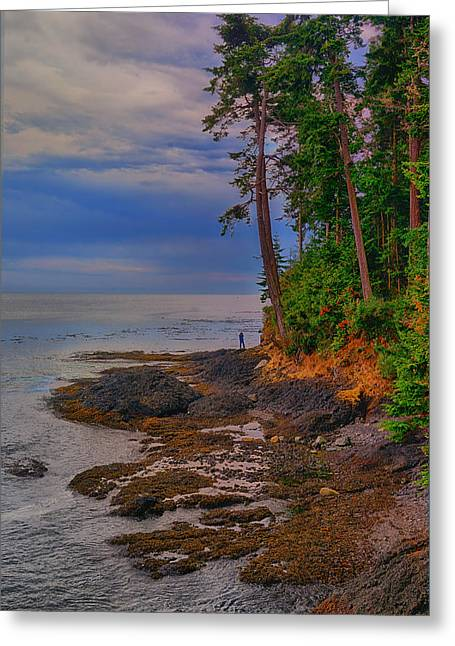 Juan De Fuca Greeting Cards - Standing by the Sea Greeting Card by Greg Norrell