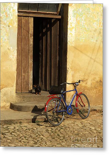 Pushbike Greeting Cards - Standing Guard Greeting Card by James Brunker