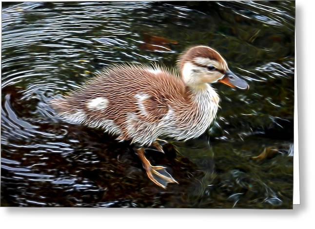 Ducklings Mixed Media Greeting Cards - Standing on a rock Greeting Card by Pamela Walton