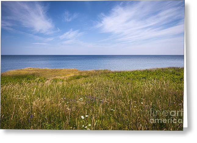 Cliffs Photographs Greeting Cards - Standing on cliff edge Greeting Card by Elena Elisseeva