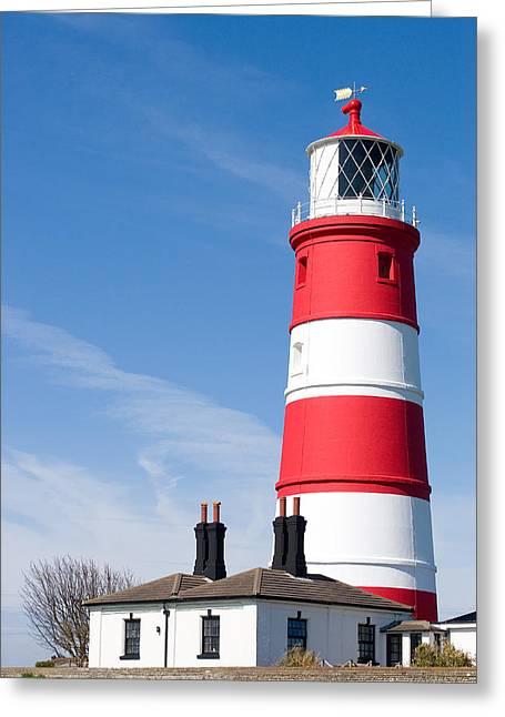 Paul Lilley Greeting Cards - Standing Proud Greeting Card by Paul Lilley